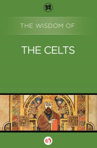 img-the-wisdom-of-the-celts-cover-large_164556932916-w200